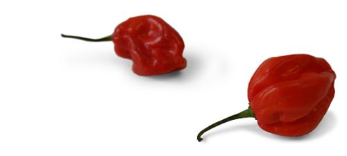 PunainenPaprika